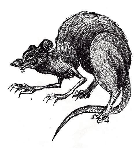 Evil Rat by DARaabe on DeviantArt