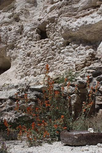 White limestone walls