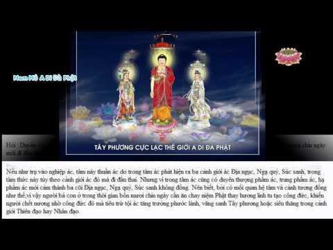 Vì Sao Người Chết 49 Ngày Mới Đi Đầu Thai? (Có Phụ Đề) (Trích từ quyển Lâm Chung Những Điều Cần Biết