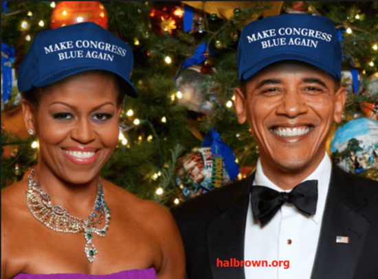 make-congress-blue-halbrown.png