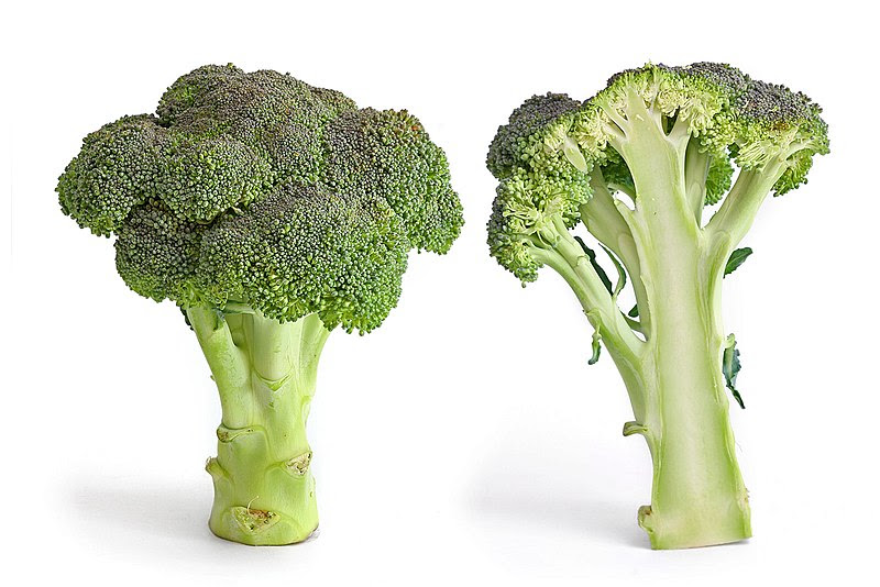 Ficheiro:Broccoli and cross section edit.jpg