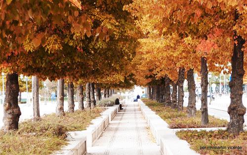 Paseo de Aranjuez