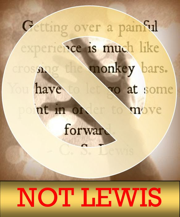 Ccslq 12 Monkey Bars Essential Cs Lewis