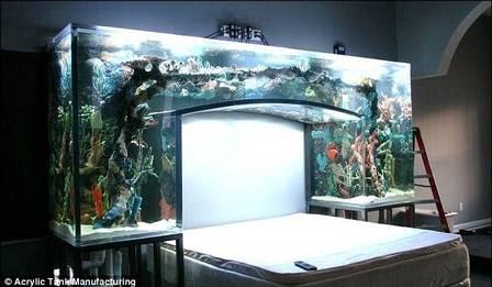 O aquário sobre a cama de Chad Ochocinco