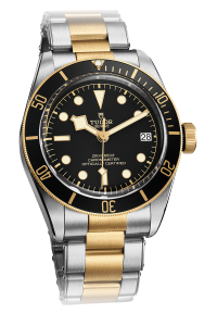 tudor steel and gold