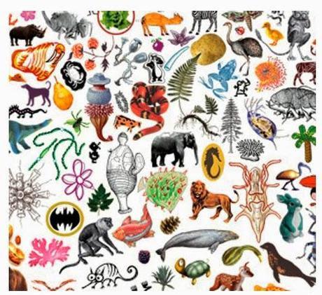 http://media.paperblog.fr/i/718/7181203/pierre-henri-gouyon-parle-biodiversite-L-RRvK4x.jpeg