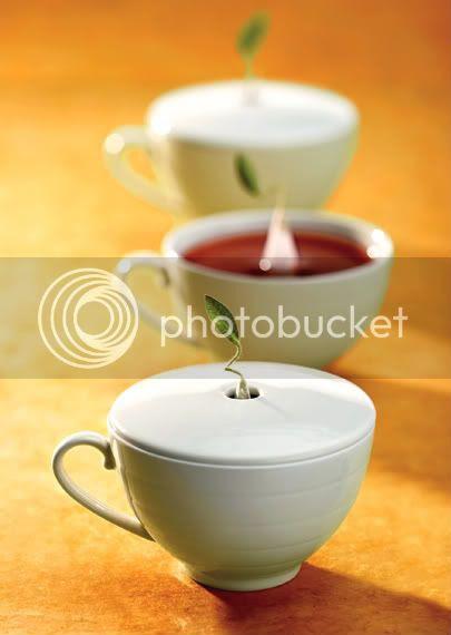 Tea Forte 3