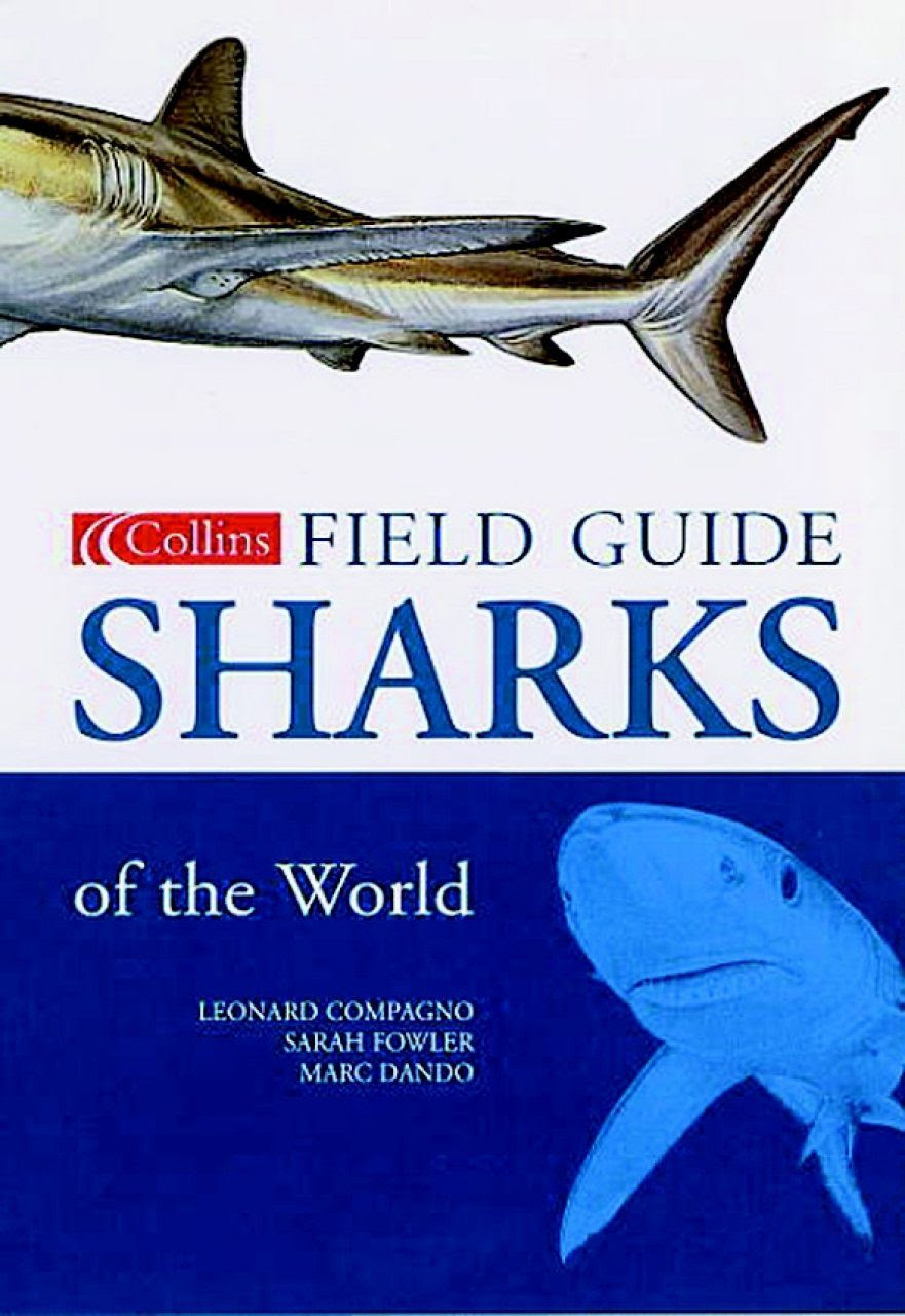 Collins Field Guide Sharks Of The World Leonard Compagno