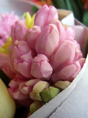 bundle of hyacinths at the market