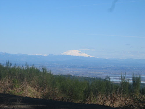Mt St Helens from Skyline Drive