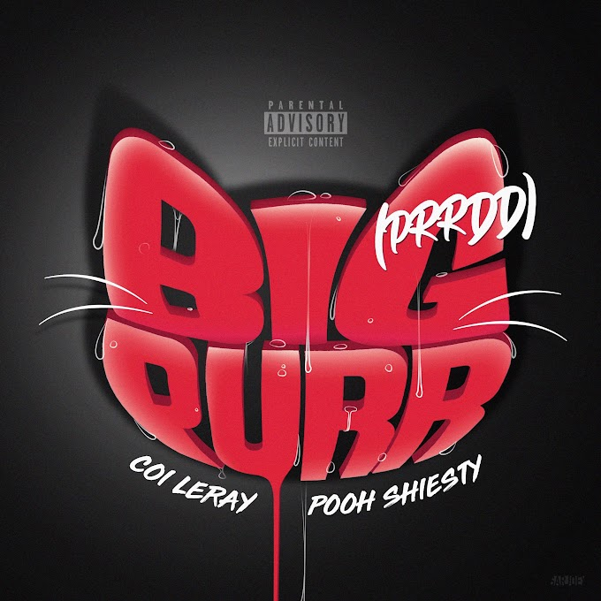 Coi Leray - BIG PURR (Prrdd) [feat. Pooh Shiesty] (Clean / Explicit) - Single [iTunes Plus AAC M4A]