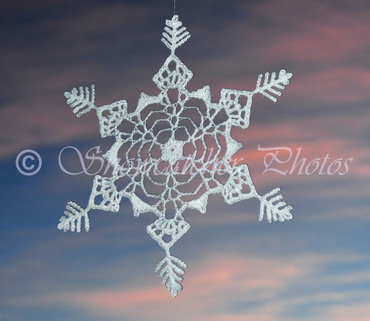Paralympic Snowflake