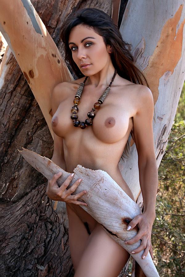Eucalyptus by abclic