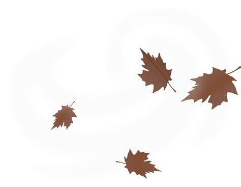 vector graphic leaves windy autumn maple leaves