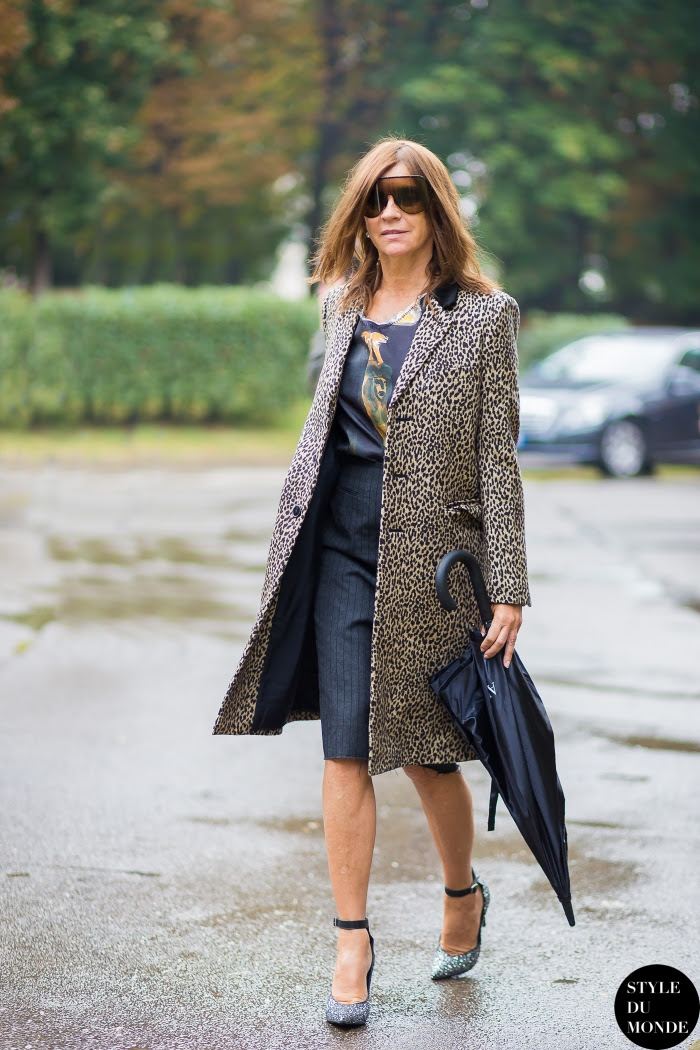 Carine Roitfeld Street Style Street Fashion Streetsnaps by STYLEDUMONDE Street Style Fashion Blog