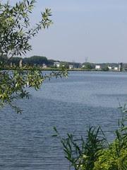 Maas bij Belfeld