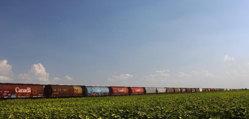 A grain train out of Winnipeg