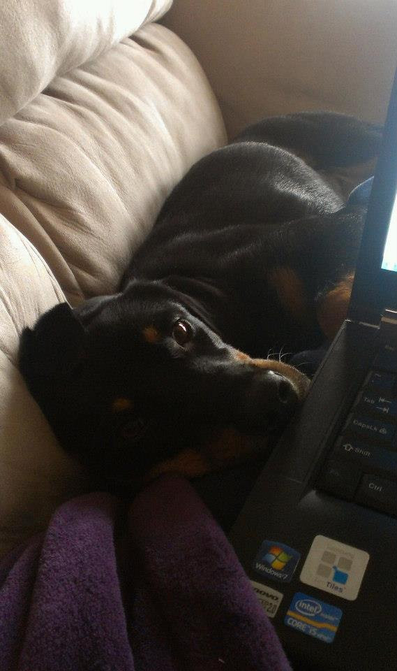 My personal assistant for work at home days