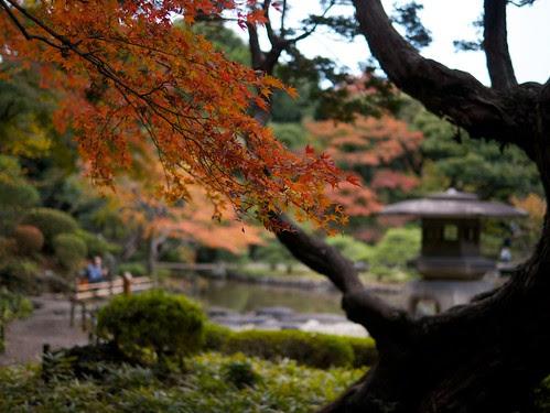 染井散歩-旧古河庭園