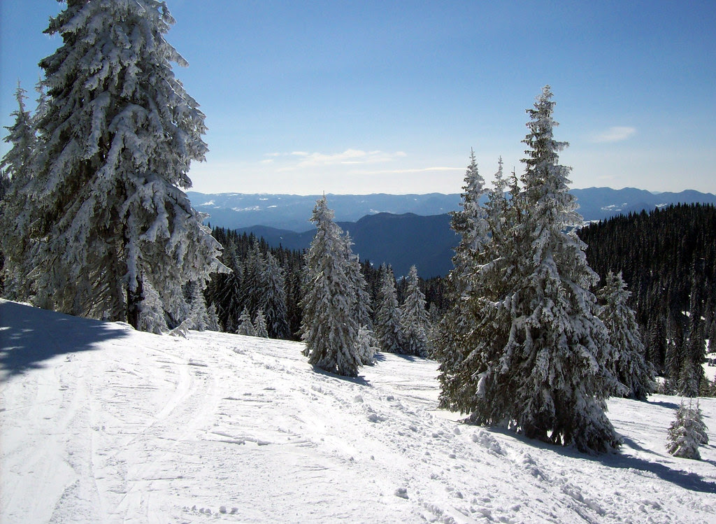 IN THE RHODOPE MOUNTAINS
