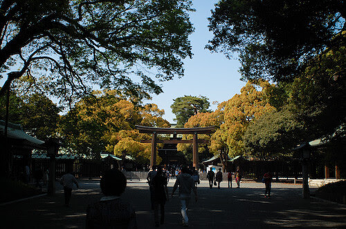 20110424-DSC_2744meiji-jingu