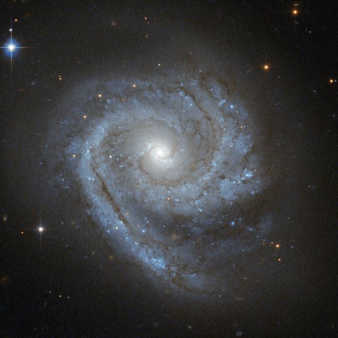 ESO_498-G5