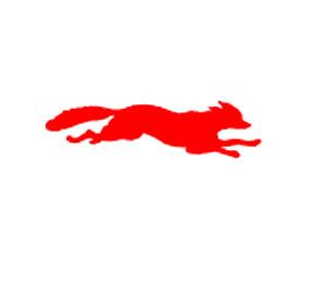 Resultado de imagen de LIBRos del zorro rojo