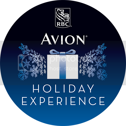 Avion VIP Holiday Experience
