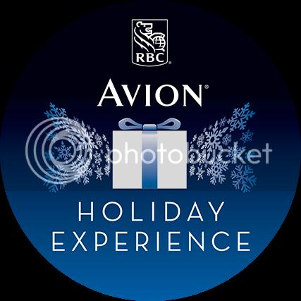 Avion VIP Holiday Experience