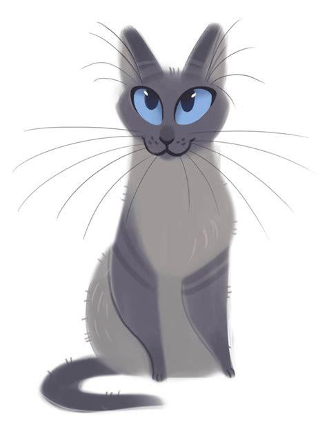 daily cat drawings photo illustration art pinterest