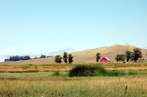 pink barn, blue sky