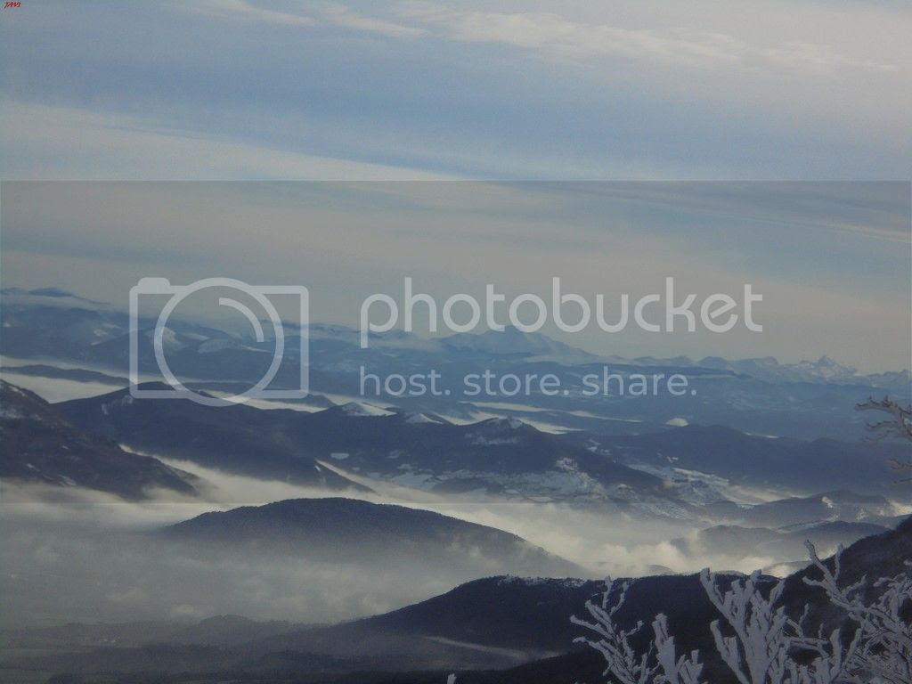 photo SAN DONATO 17-01-16 139_zpsnusvbat1.jpg