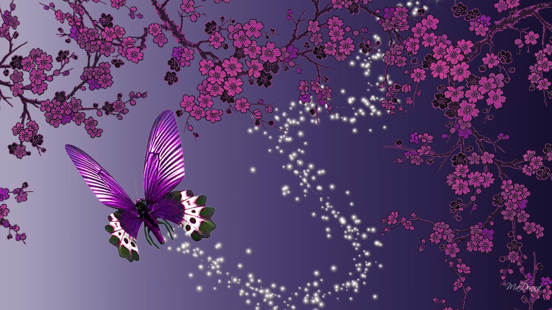 Butterfly Sparkle Trail HD desktop wallpaper : Widescreen ...