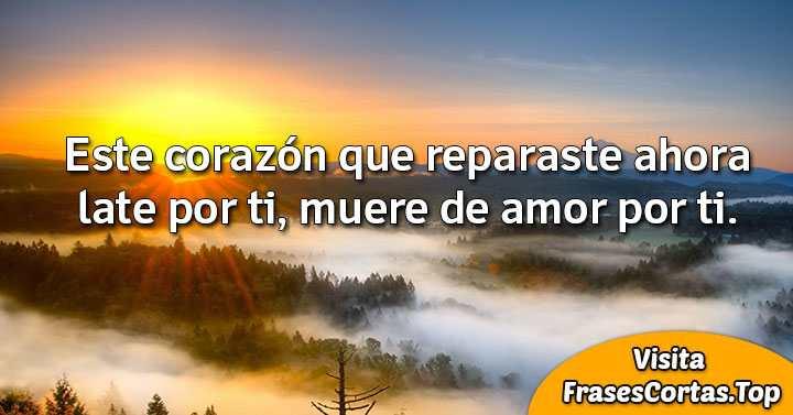 Frases Tumblr Cortas Bonitas De Amor Románticas Y De La Vida