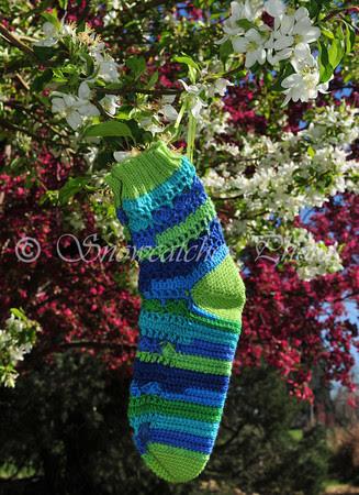Susie Socks in Spring