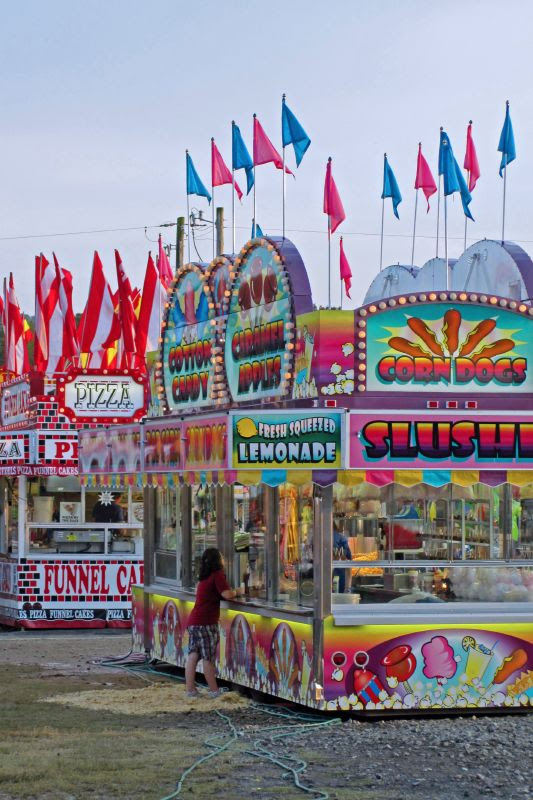 Polk County Fair 7