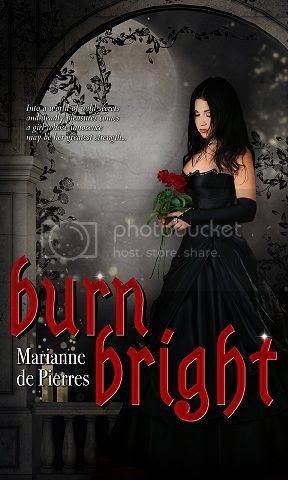 Burn Bright by Marianne de Pierres