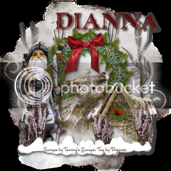 Woodland Winter - Dianna photo Woodwinter_11282010Dianna.png