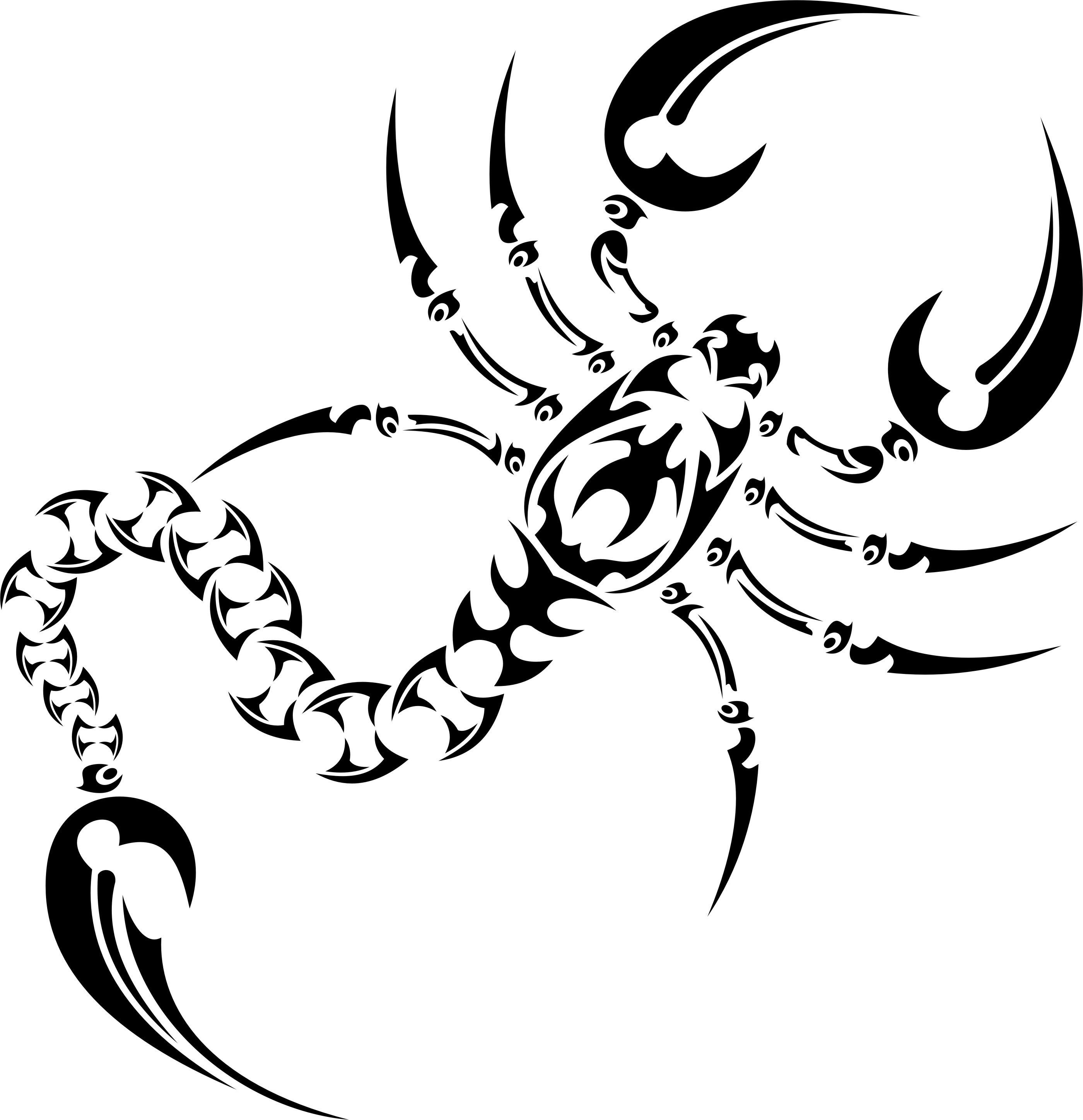 Scorpion Tattoo Drawing At Getdrawingscom Free For Personal Use