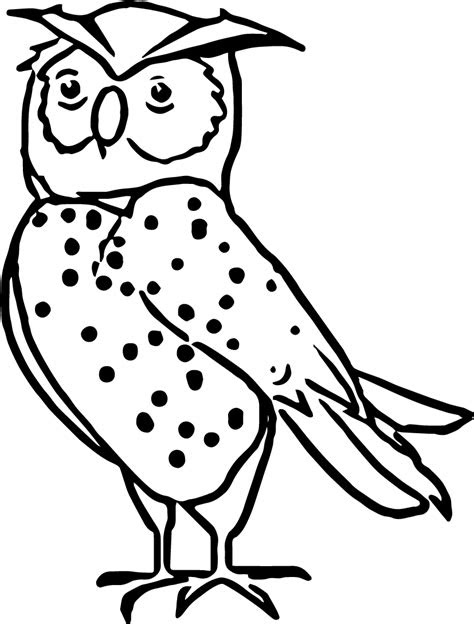 nocturnal animals printable coloring pages coloring pages
