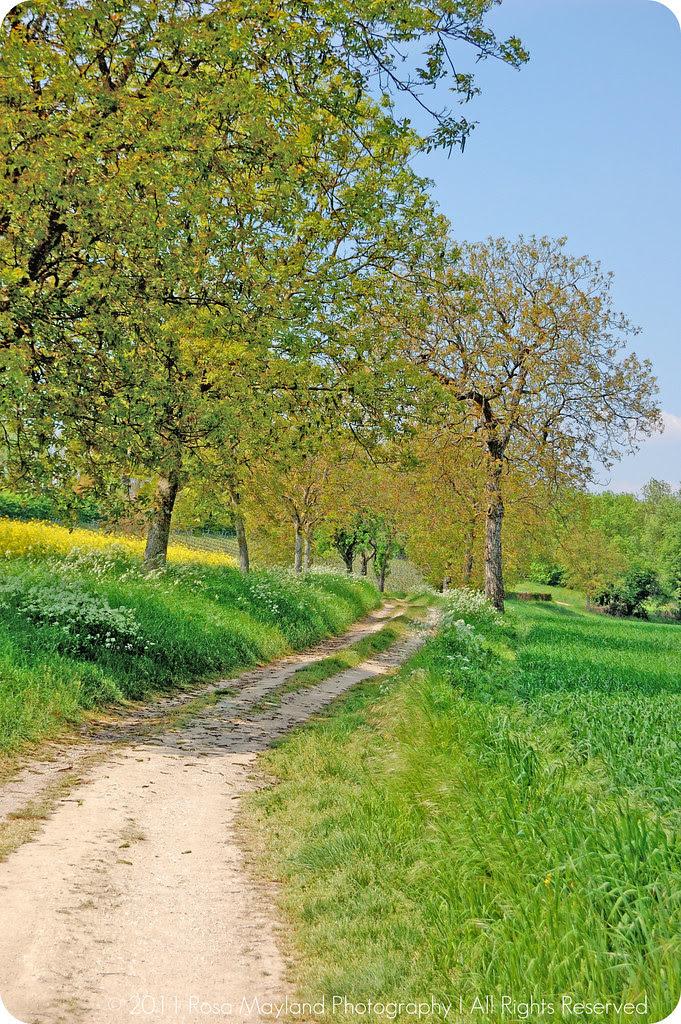 April-May Path Sierne 1 bis