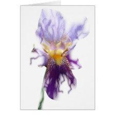 Glowing Purple Iris Card card