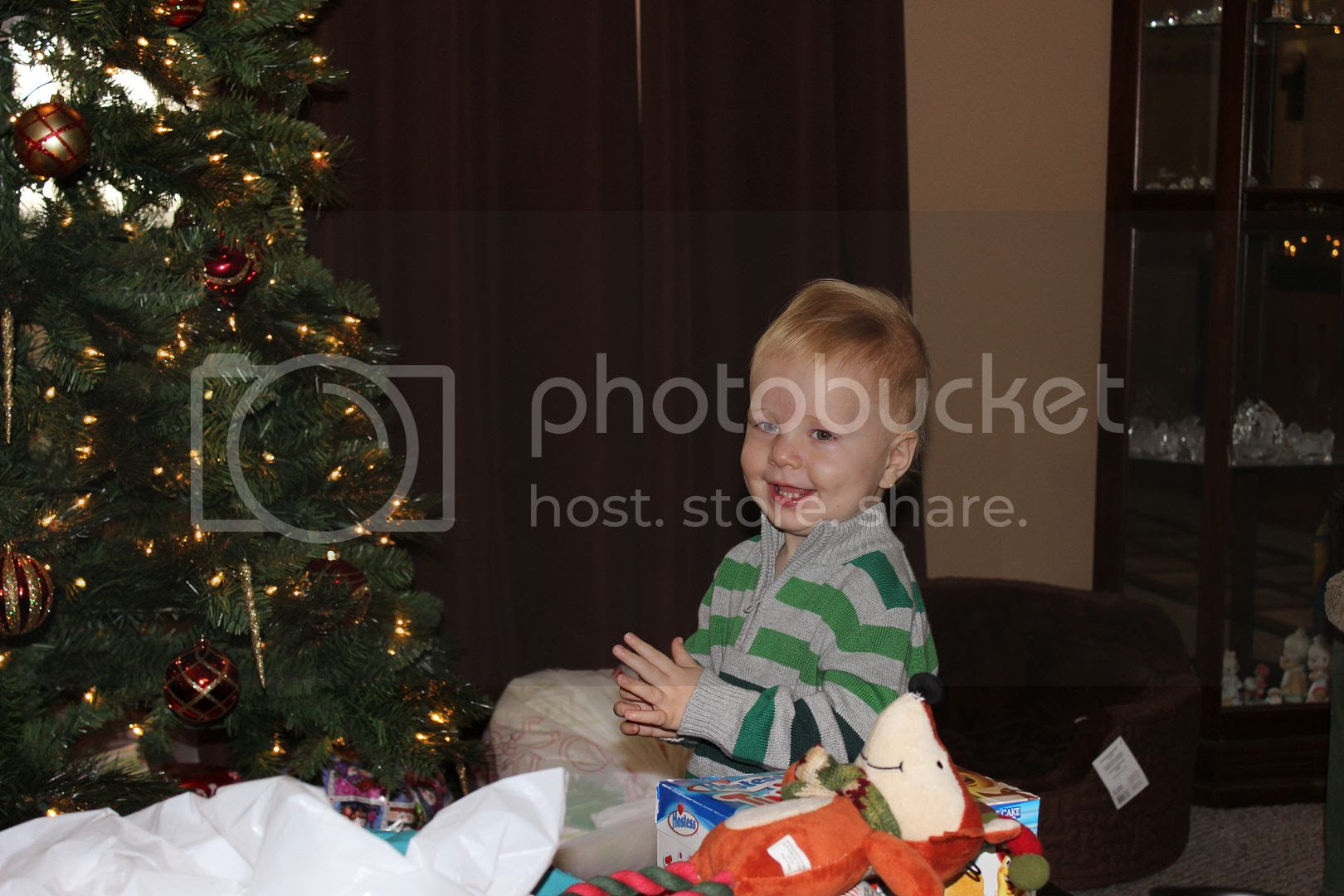 Christmas Pictures