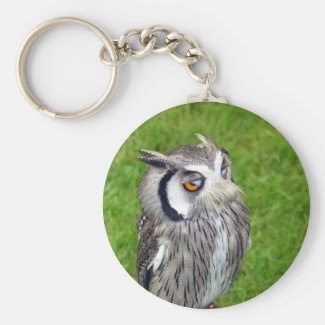 Gorgeous Little Owl Basic Round Button Keychain