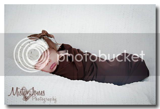 Tampa Bay Newborn Portraits
