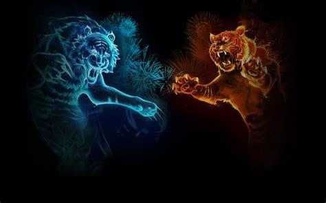 tiger wallpaper  hintergrund  id