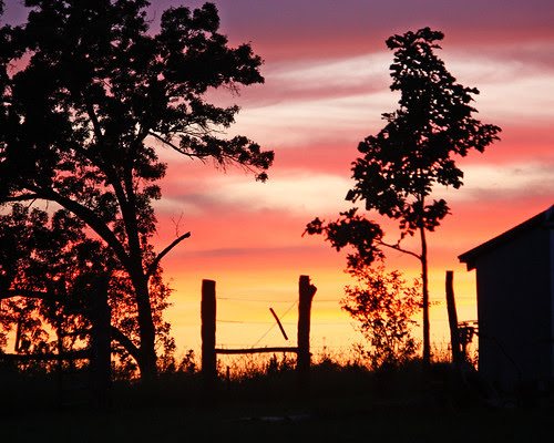 Sunset at our new farm
