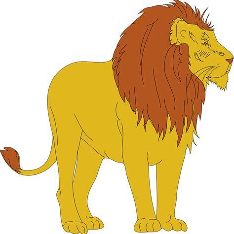 singa hewan binatang menyusui gambar vektor gratis