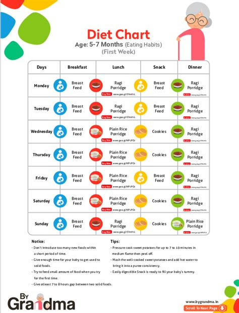 month baby food chart  indian baby print  month