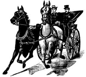 http://www.webweaver.nu/clipart/img/nature/horses/horse-buggy.jpg